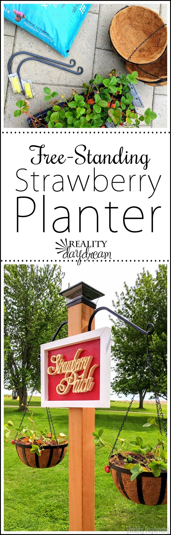 Free-standing Strawberry Garden with Hanging Planters - perfect for small spaces or renters! {Reality Daydream}
