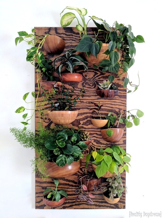 Living Wall vertical planter made from Thrifted wooden bowls {Reality Daydream}