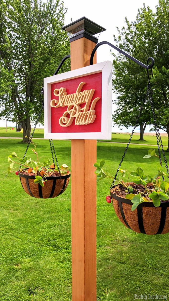 Strawberry Patch free-standing strawberry garden with hanging planters... renter-friendly and perfect for small-space living! {Reality Daydream}