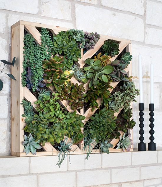 Vertical Succulent Planter with chevron detail - Living Wall Roundup by Reality Daydream