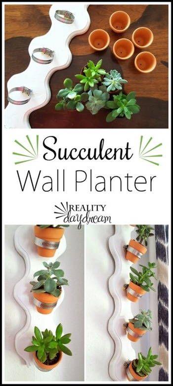 Succulent Wall Planter with tiny terra cotta pots! {Reality Daydream}