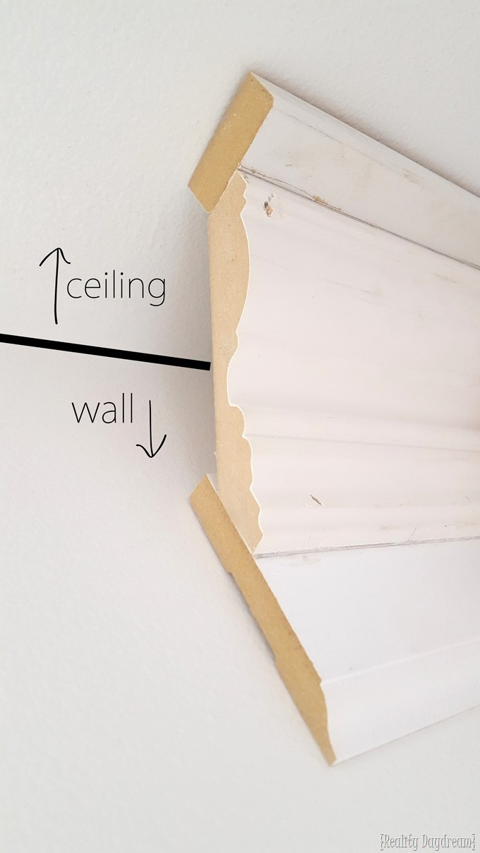 Installing chunky crown molding along the ceiling. Tips and tricks! {Reality Daydream}
