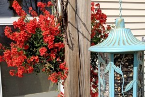 Edging and mulching your flowerbed